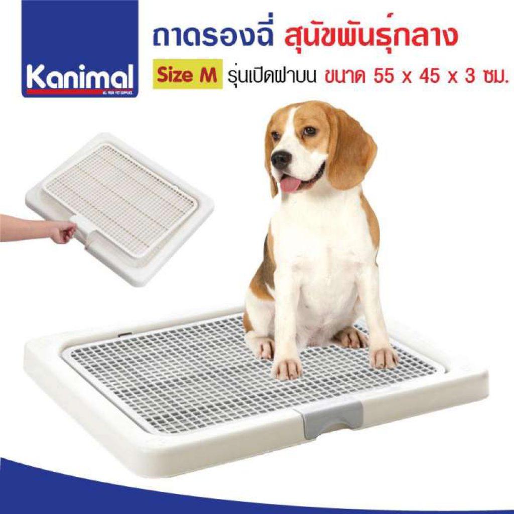 Kanimal Dog Toilet ห้องน้ำสุนัข ถาดฝึกฉี่สุนัข สำหรับสุนัขพันธุ์กลาง
